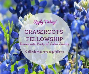 Now Taking Applications for Fall Fellows!