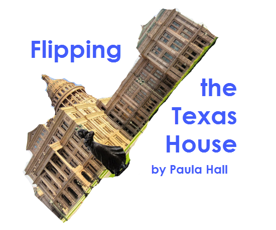 Flipping the Texas House